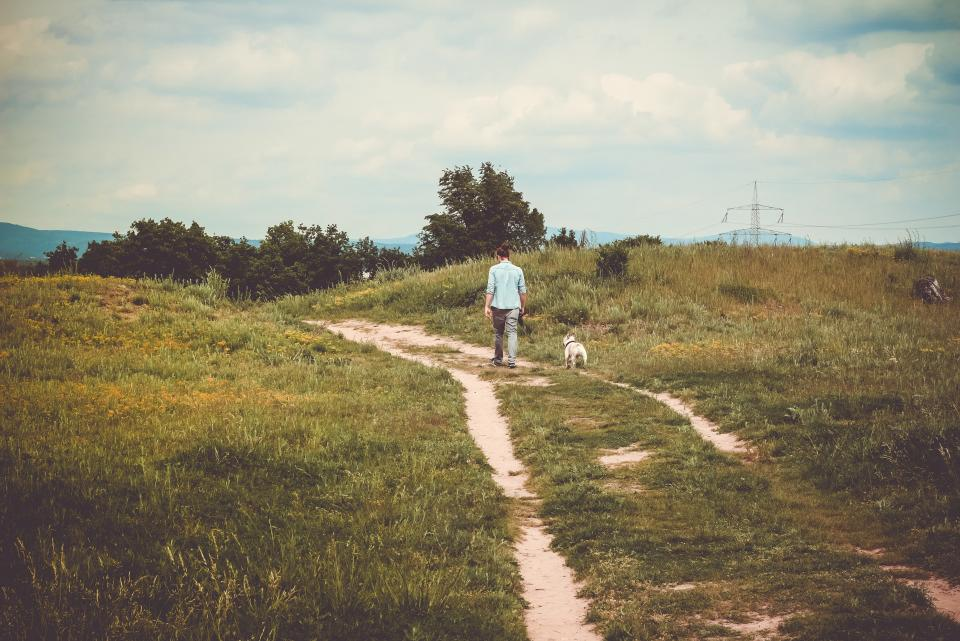 green, grass, path, trees, plants, nature, highland, people, walking, woman, pet, dog, animal, blue, sky, clouds