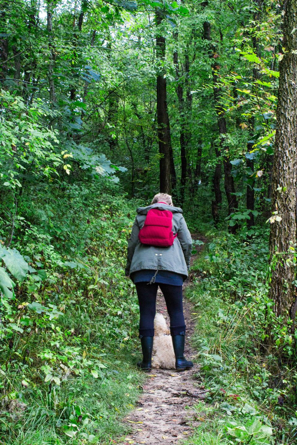 people, woman, walking, dog, puppy, pet, animal, path, green, grass, trees, plant, forest, travel, outdoor, adventure, hiking