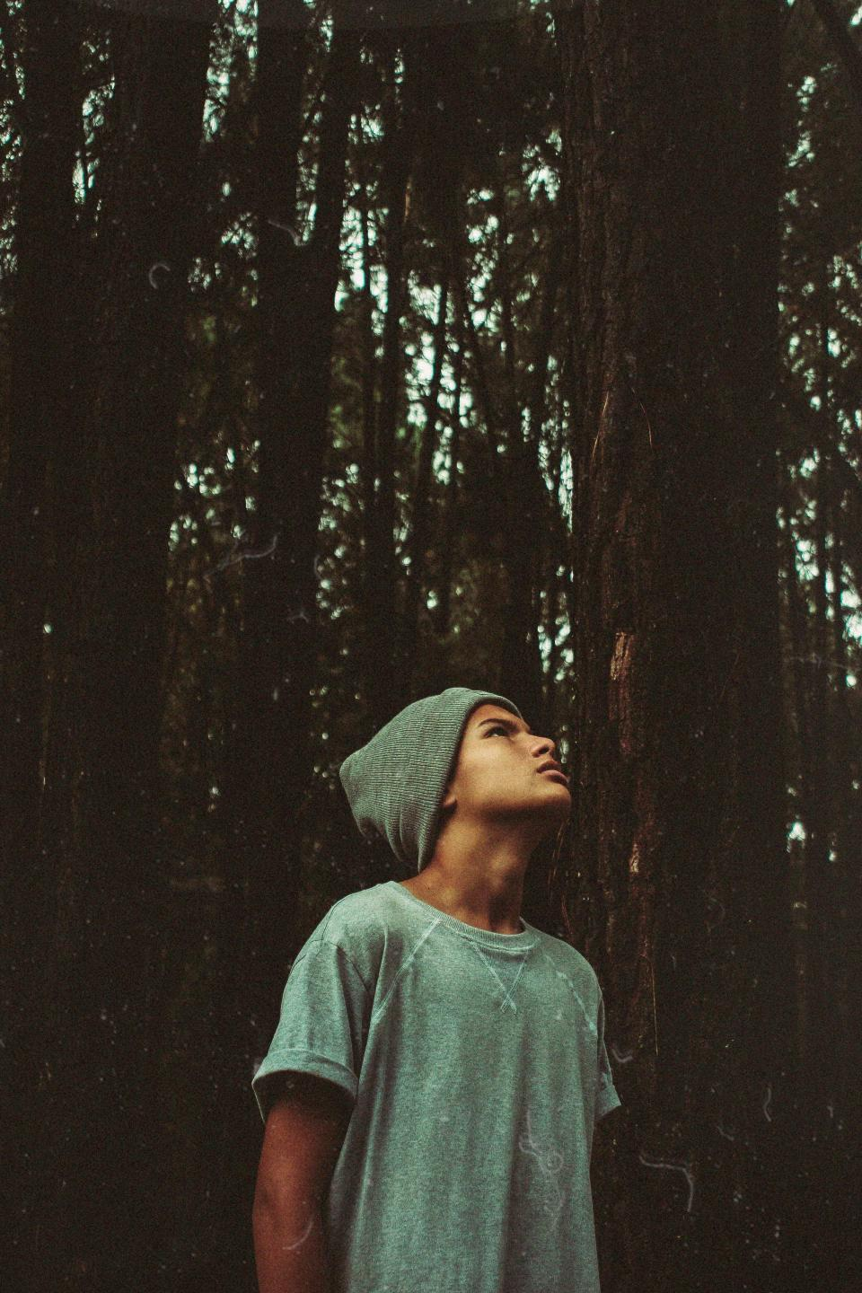 man, guy, beanie, trees, forest, nature, model, fashion, looking, up, grey