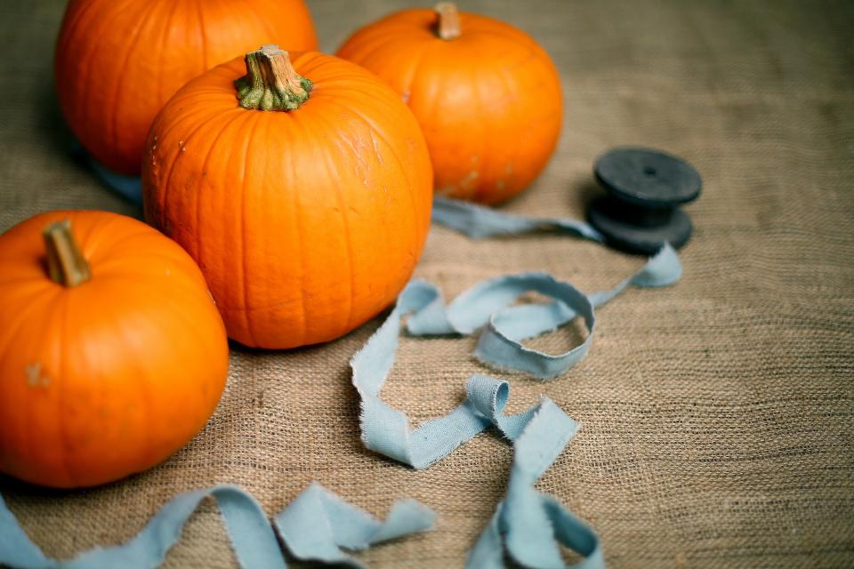 orange, winter, squash, vegetable, pumpkin, halloween, cloth