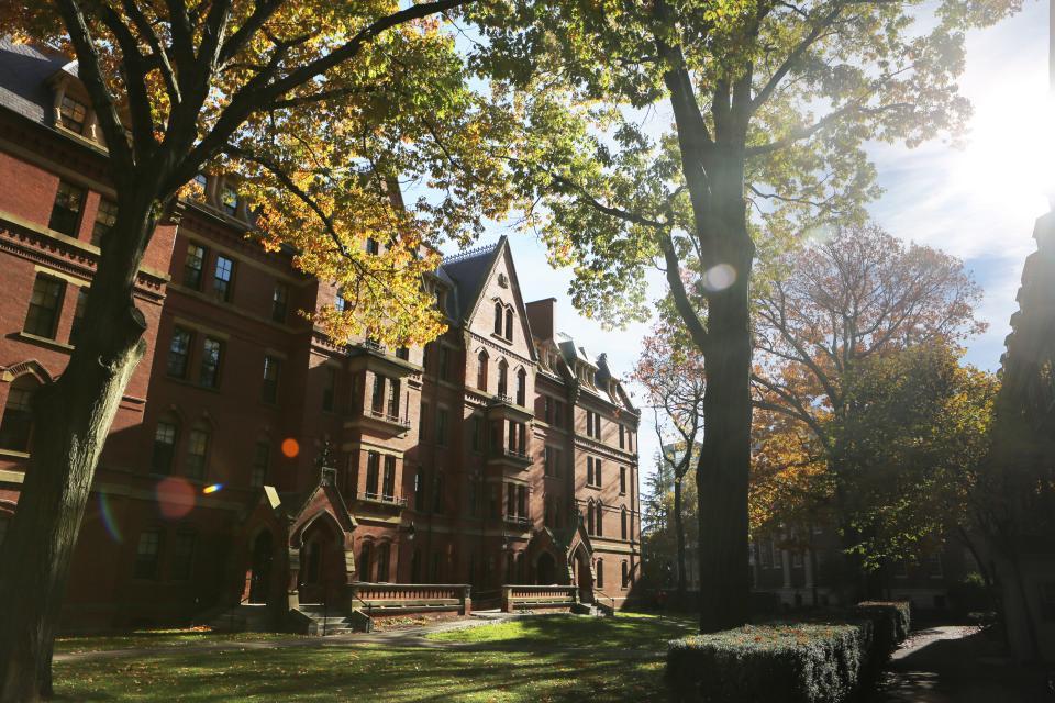 harbad university boston school campus buildings architecture trees grass sunshine grounds class