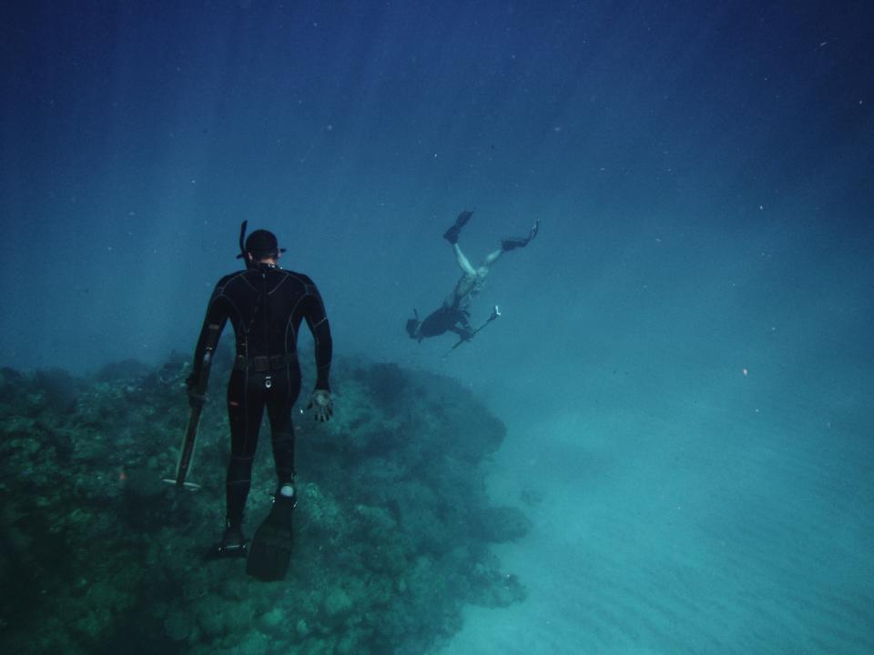 nature, landscape, ocean, sea, beach, vacation, travel, adventure, diving, corals, underwater