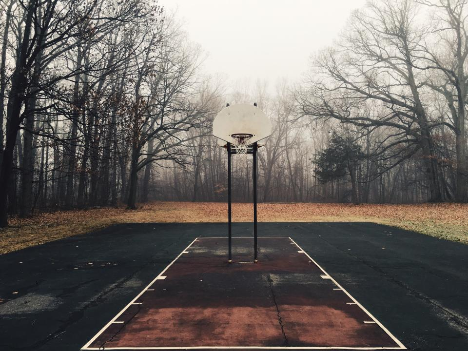 basketball, court, net, hoops, yard, outdoors, trees, leaves, fall, autumn, forest, woods, sports