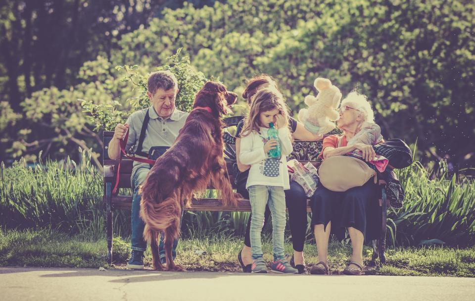people, family, man, old, woman, kid, girl, child, dog, pet, animal, sitting, bench, waiting, green, grass, trees, plants, nature