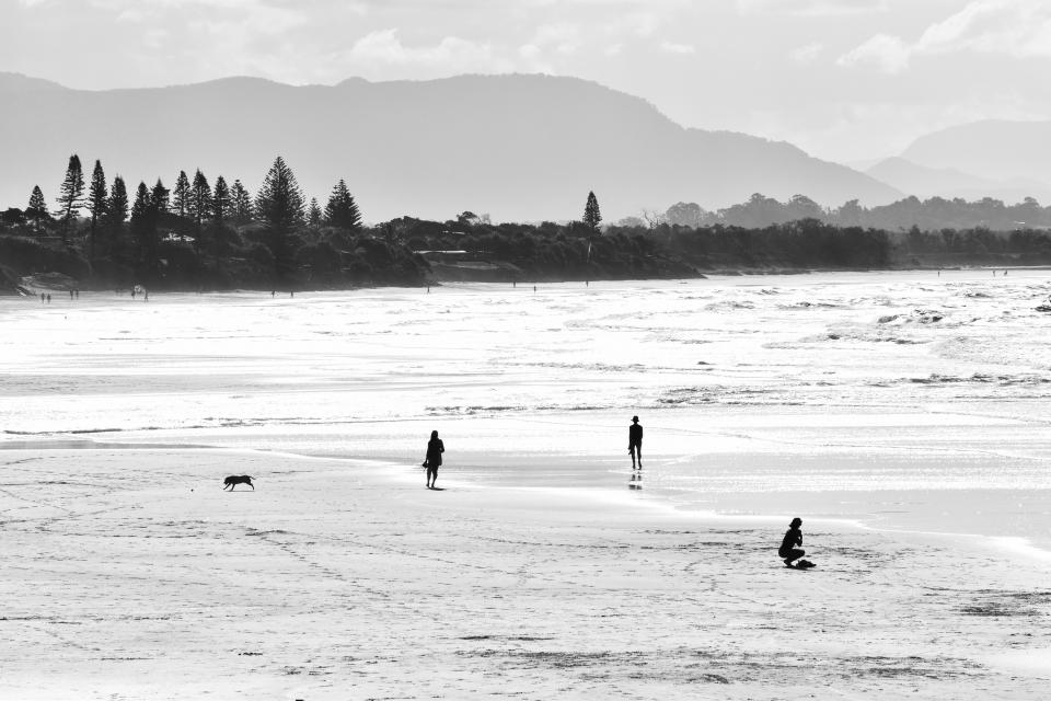 black and white, sea, ocean, water, beach, wave, shore, vacation, swimming, people, family, friends, girls, man, dog, animal, pet, trees, mountain, sky, nature
