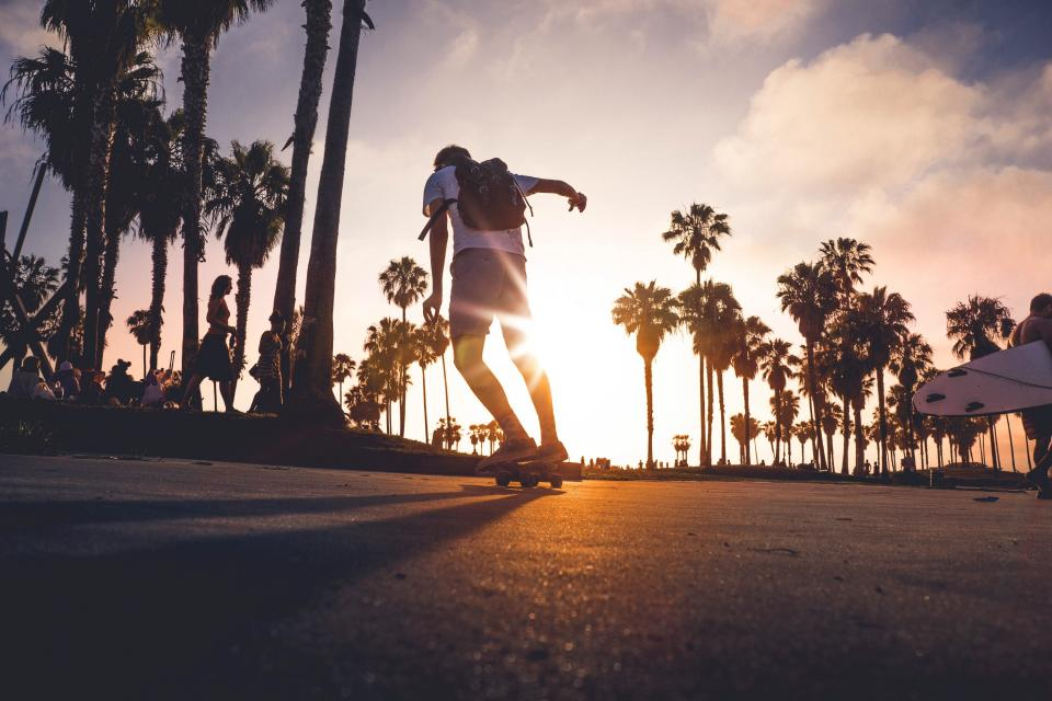 skateboard, skateboarding, skateboarder, pavement, concrete, guy, man, people, lifestyle, city, palm trees, sunset, dusk, sky, clouds, summer
