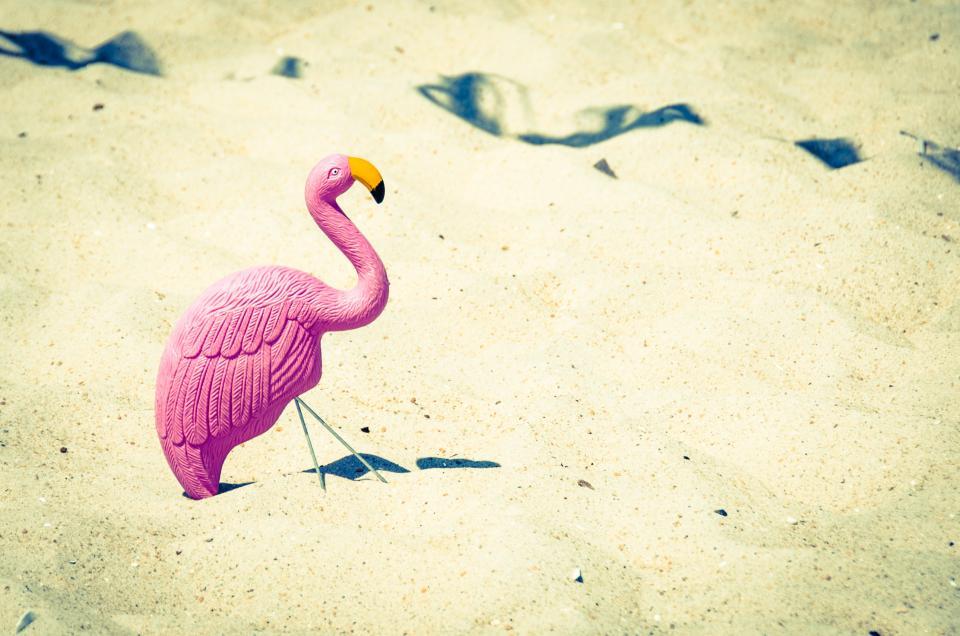 pink, swan, beak, toy, sand, beach, ocean, sea, sunny, sun