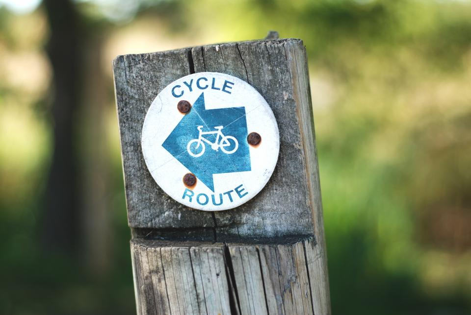 cycle, route, bicycle, bike, wood, trees, blur, exercise, hobby, sport