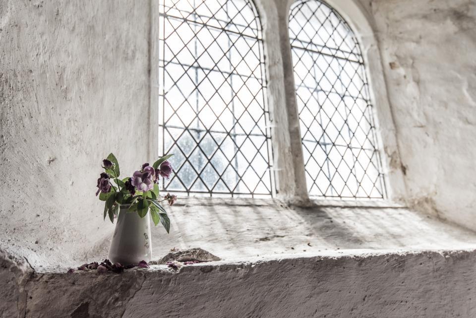 window sunlight flowers bouquet vase concrete white