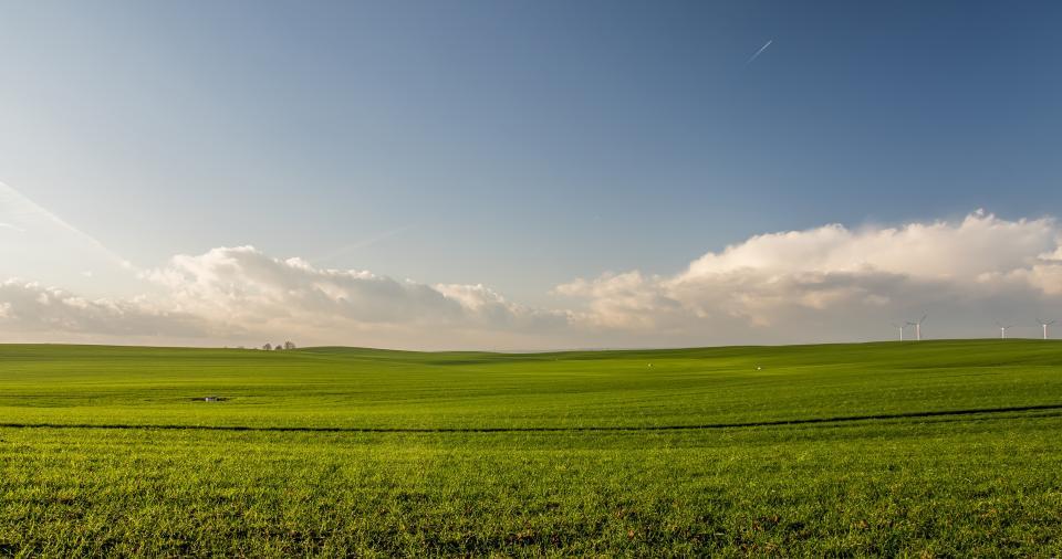 Thumbnail for Sicilia. Contributi attività extra-agricole in zone rurali
