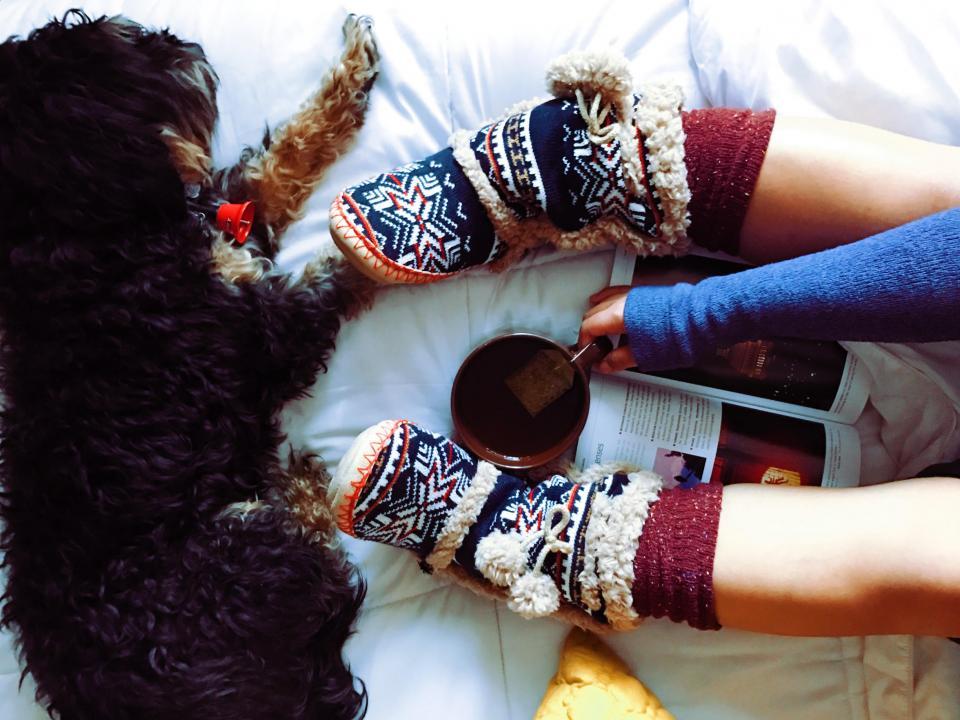 dog, animal, pet, cup, mug, leg, magazine, tea, sock, relax, pillow, white, bed, sheets
