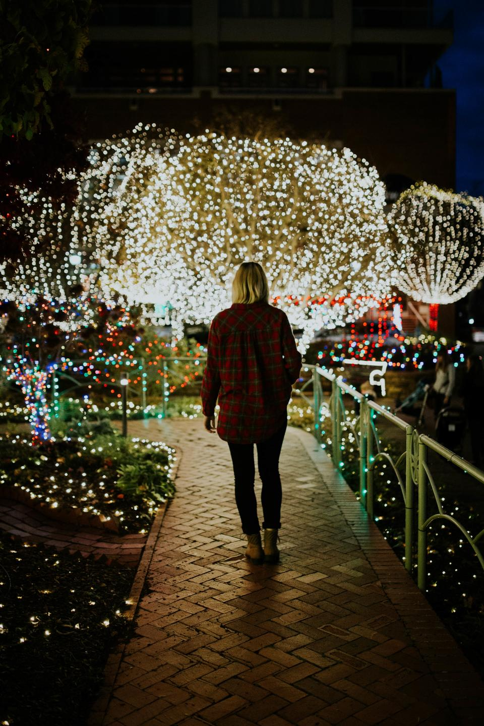 people, woman, lights, dark, night, festival, celebration, holiday, christmas lights, christmas, tree