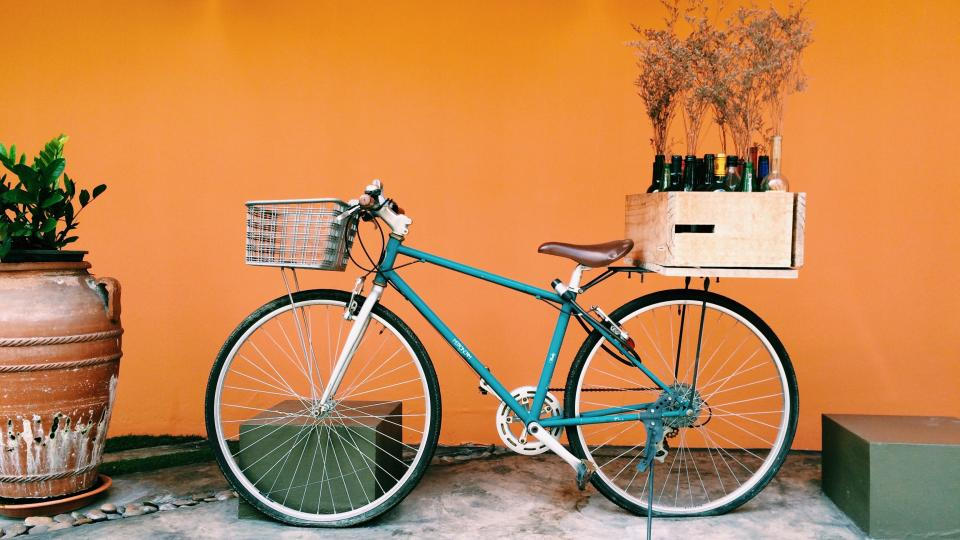 bicycle, bike, aesthetic, plant, flowerpot, pot, vase, drinks, beverage, design