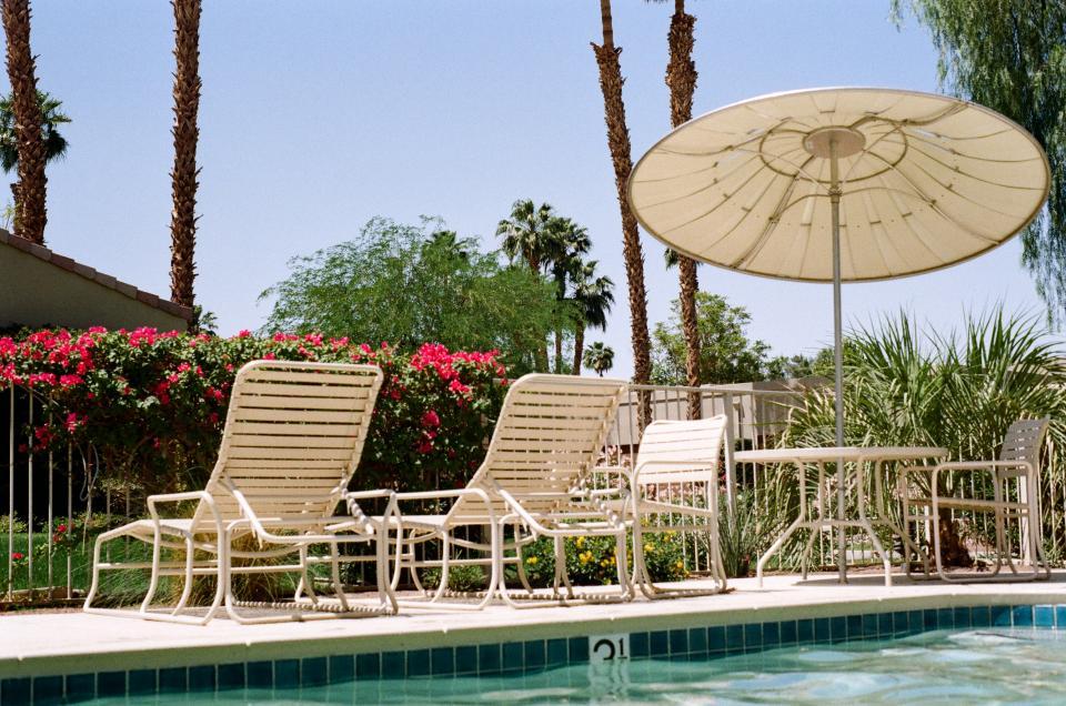 swimming pool umbrella patio chairs palm trees flowers plants sunshine hot backyard