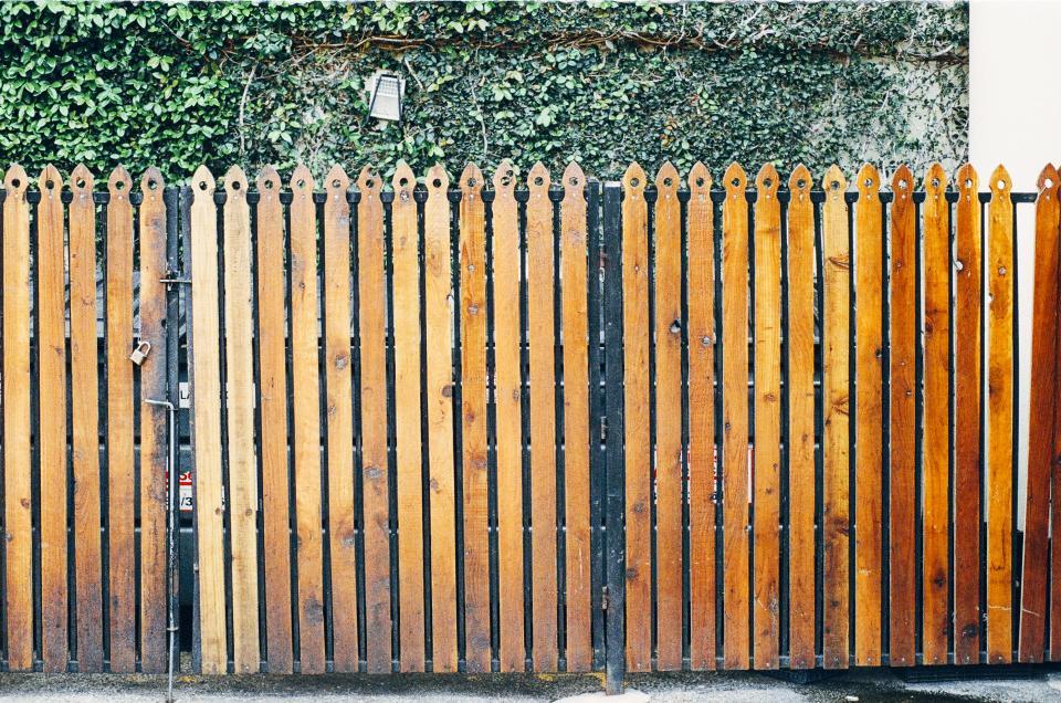 wood, fence, gate, lock, vines, leaves