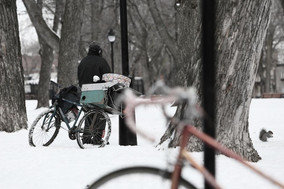 snow, winter, cold, bike, bicycle, homeless, man, trees, tree trucks, bark, lamp posts