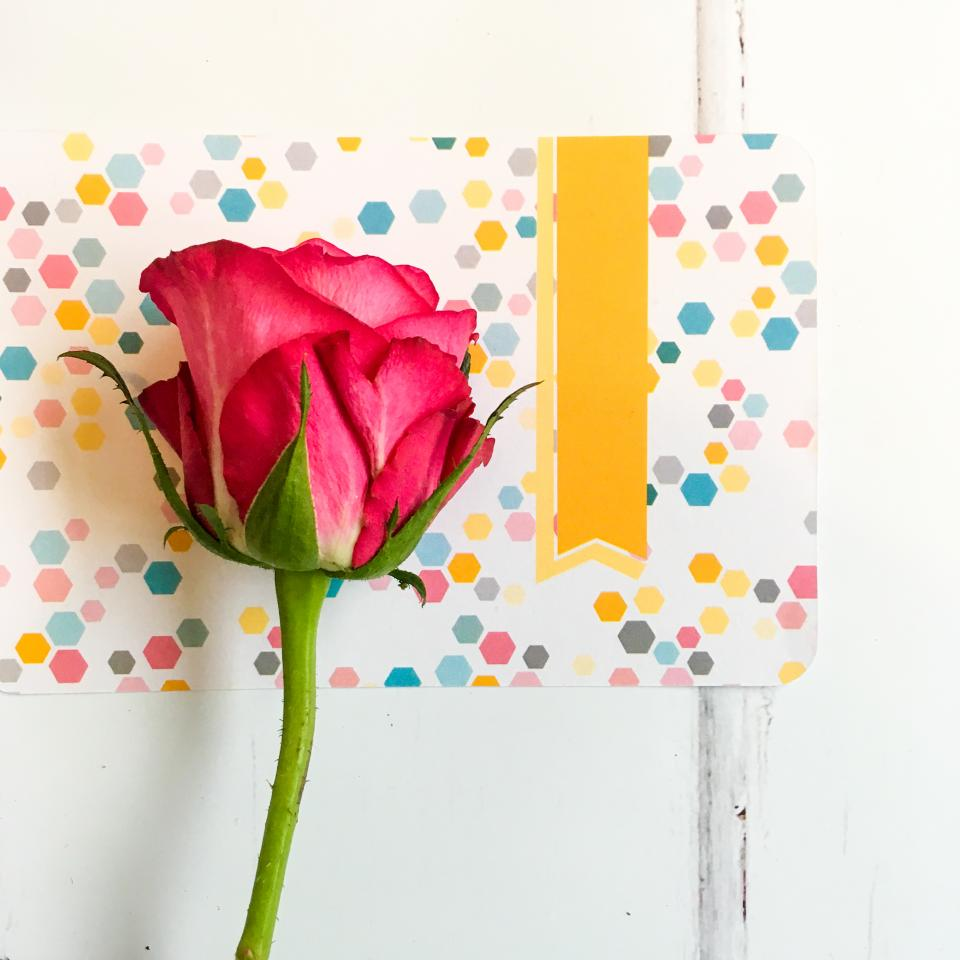 red, roses, flower, craft, card, paper