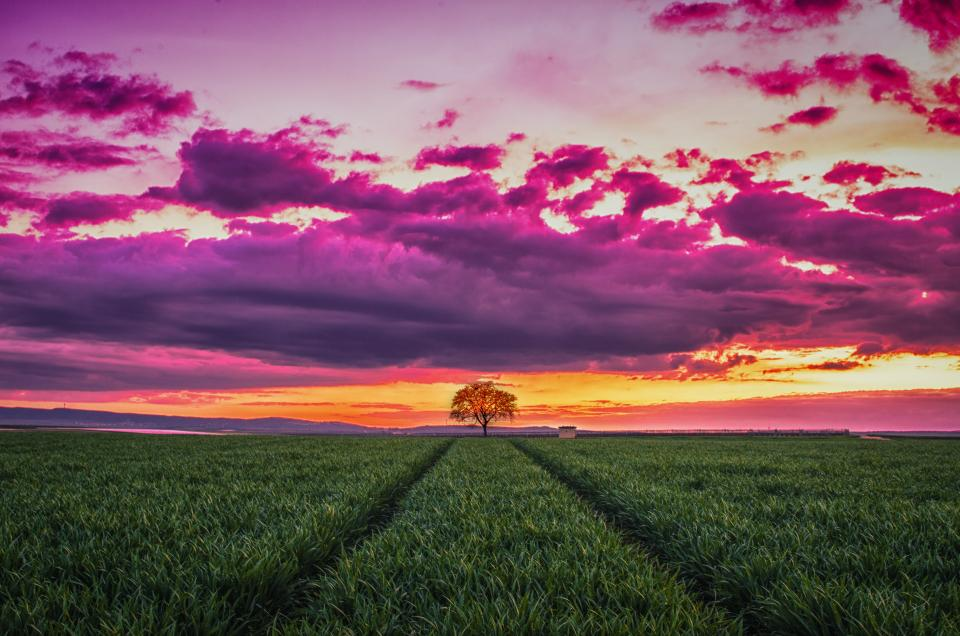 sky clouds nature green grass nature agriculture tree field farm horizon