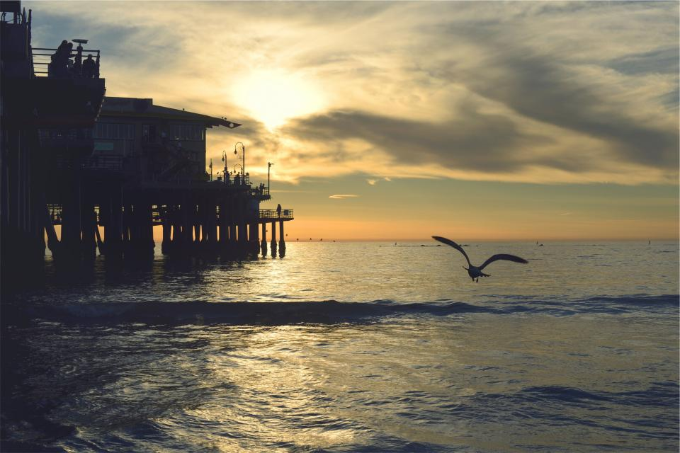 sunset, pier, dock, ocean, sea, waves, birds, wings, flying, shore, sky, clouds, horizon, dusk, people