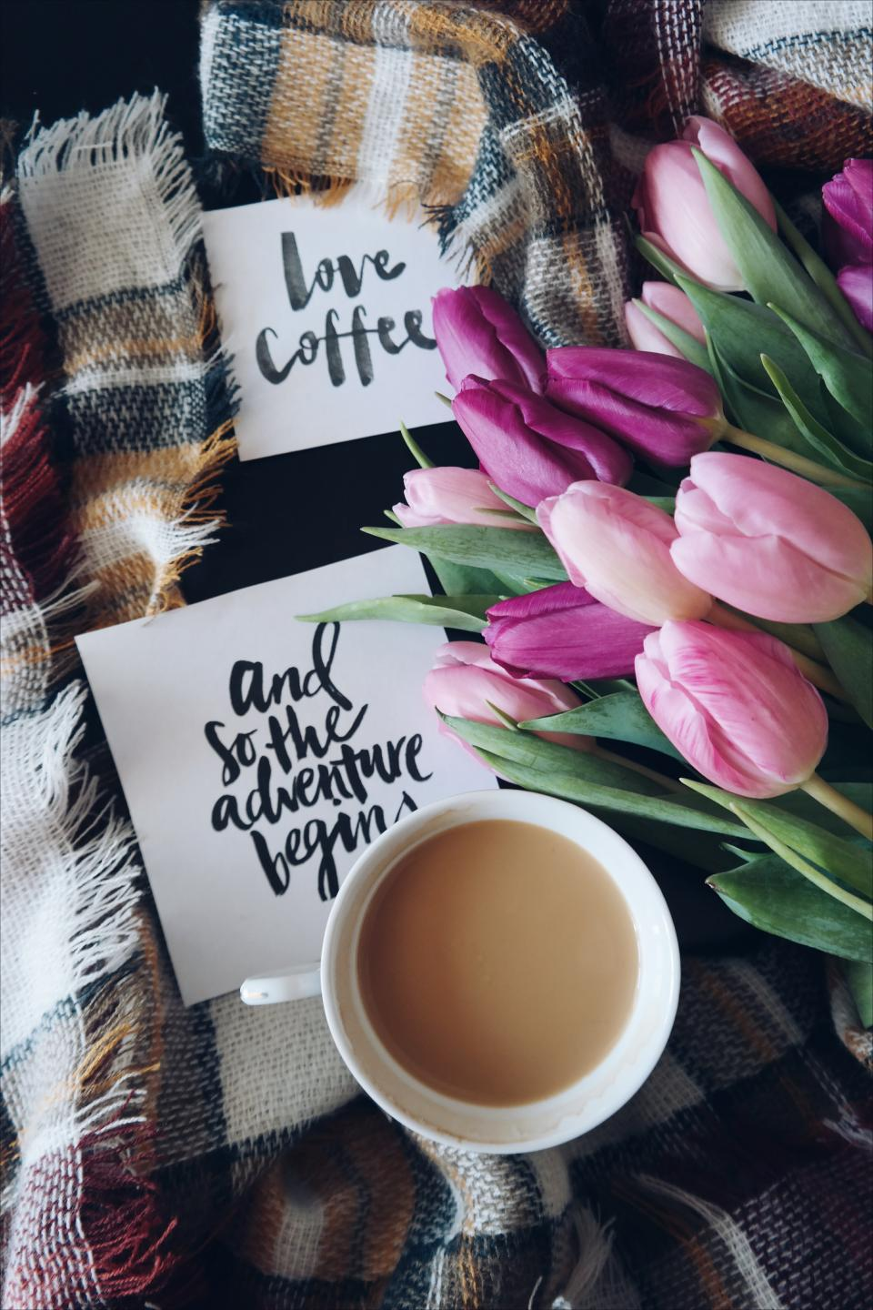 coffee, cafe, hot, mug, cup, white, lettering, quote, flower, pink, tulip, leaves, bloom, autumn, fall