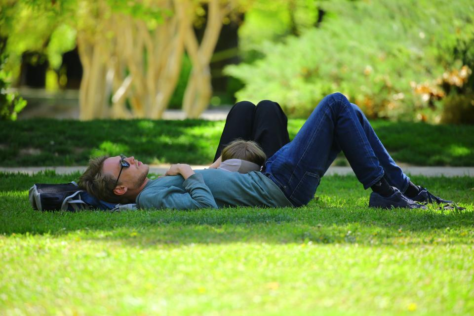 people guy girl green grass field relax dating love trees nature summer sunny sunset sunrise shade