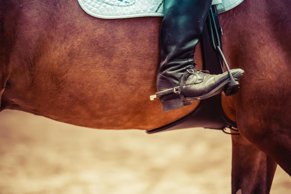 horse, shoes, cowboy, saddle, country, animals