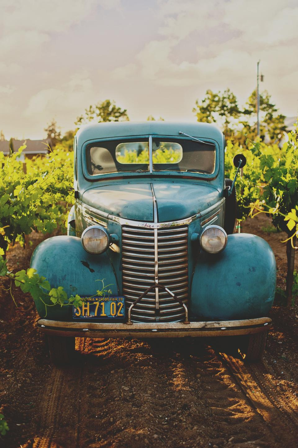 car vehicle transportation travel adventure old vintage farm green leaves dirty