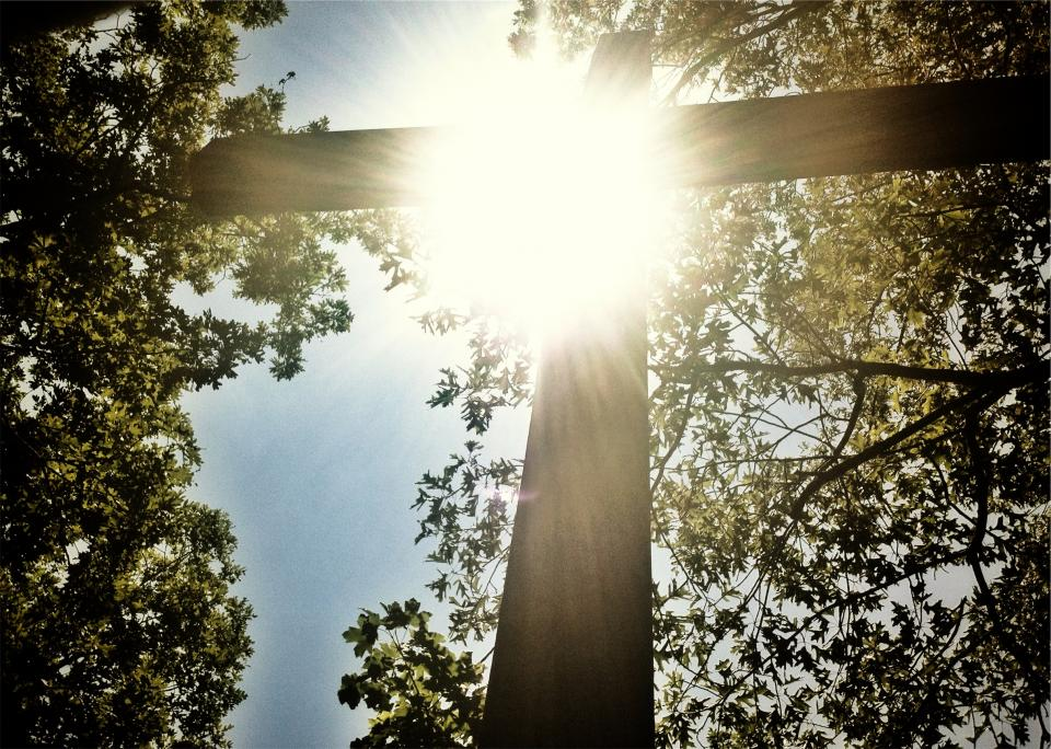 sunshine, cross, religion, catholic, christian, trees, church