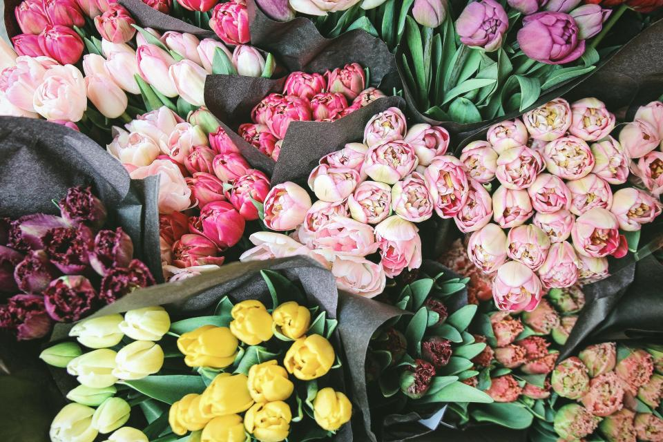 colorful, flower, tulip, plant, display, bouquet, bundle, bunch