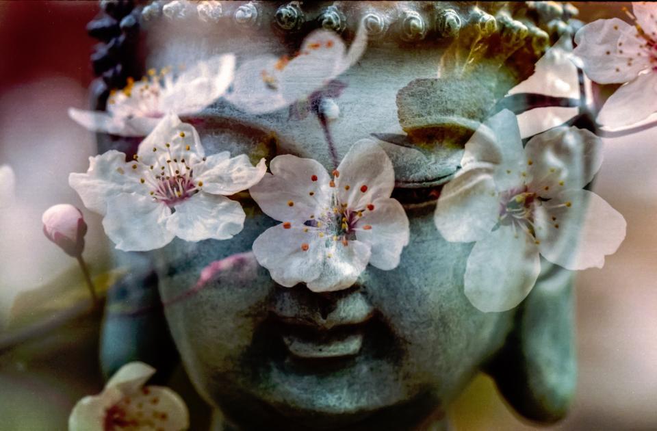 art, sculpture, statue, buddha, stone, nature, flowers, petals, double, exposure