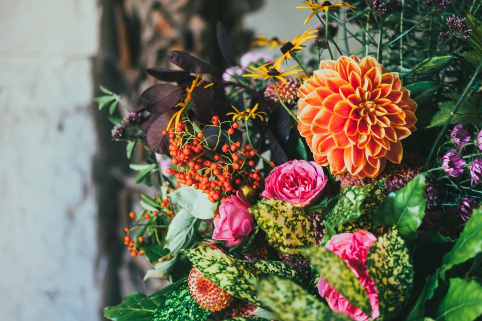 flowers, colorful, display, decoration, leaves, garden, cherries, sunflower, rose, bokeh, bouquet, plant, bloom, nature, petals