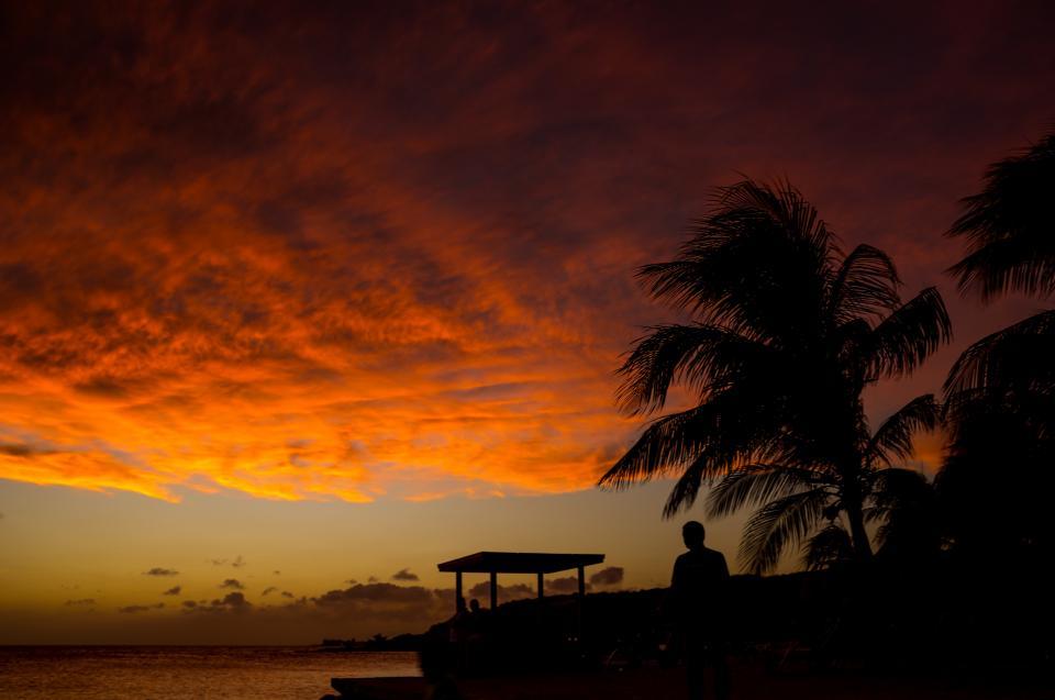 sunset ocean sea beach dark shadow silhouette people man trees clouds sky travel adventure vacation