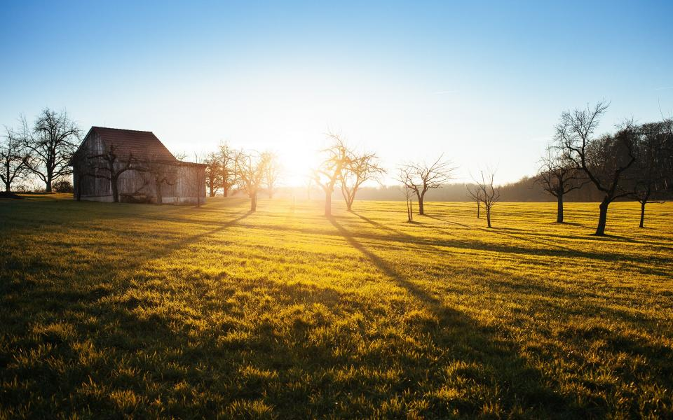 sunrise morning farm barn trees fields grass blue sky country
