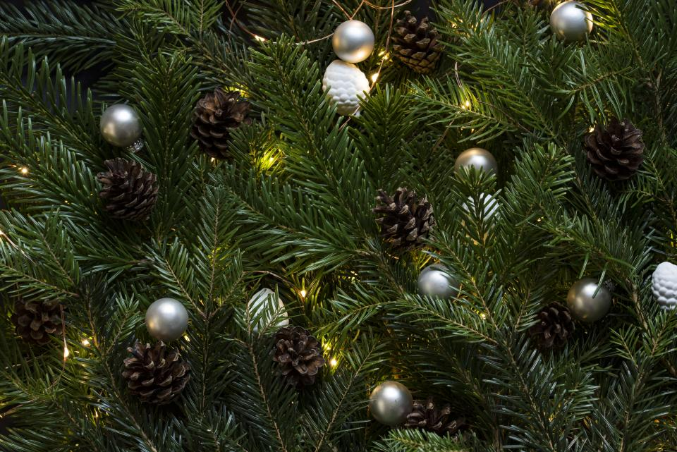 christmas, tree, decorations, ornaments, pine cones, holiday, lights, festive