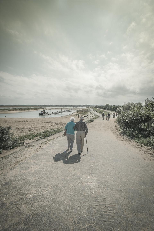 old, couple, elderly, love, walking, cane, path, people, sunshine, sunny