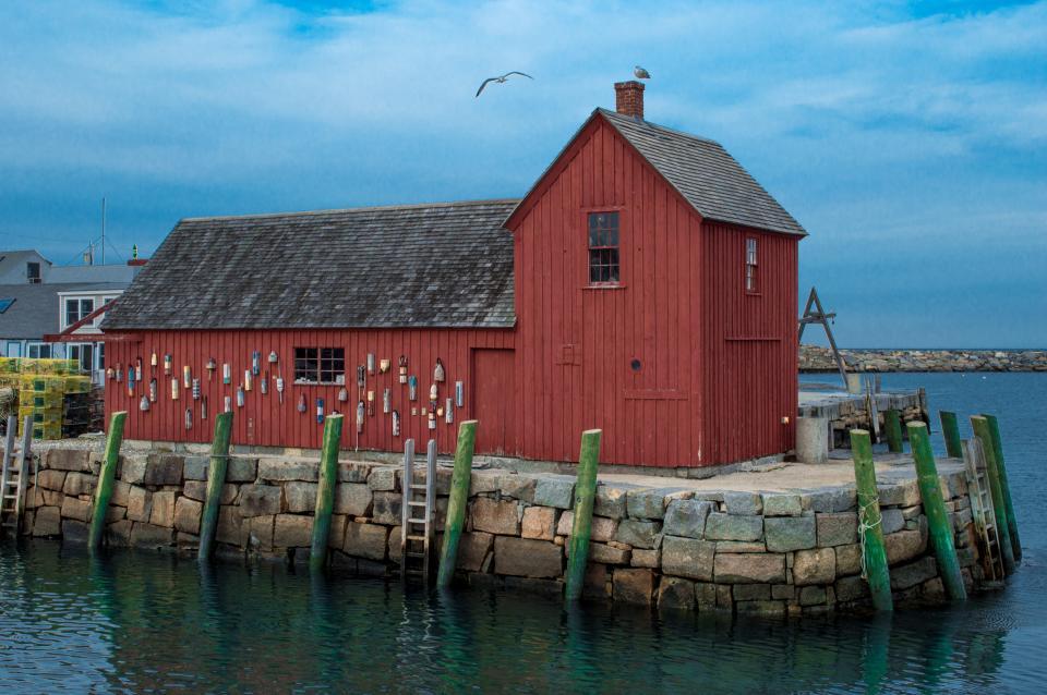 blue, sky, birds, flying, animal, wood, sea, water, house, cottage, landscape