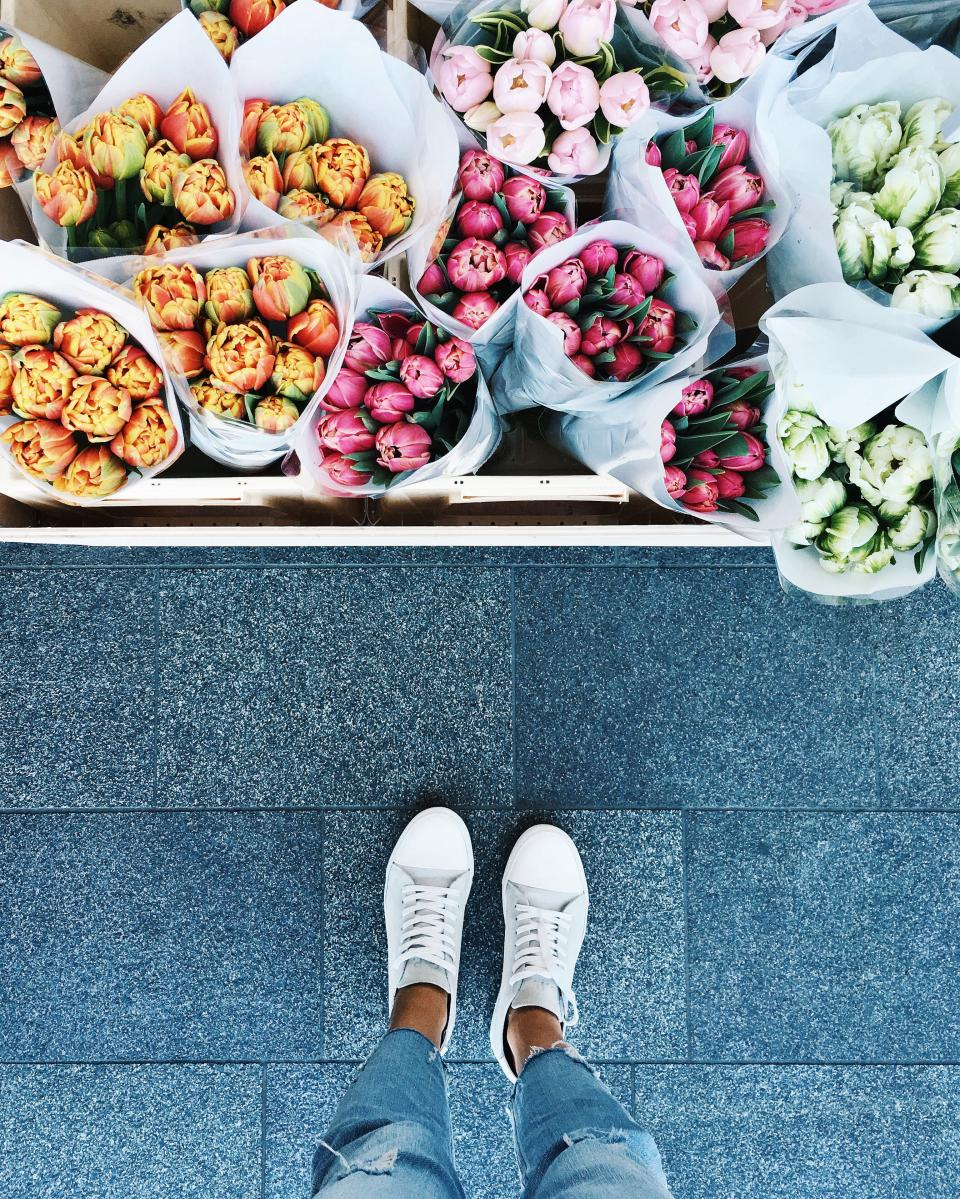 colorful, flower, tulip, plant, display, footwear, white, shoe