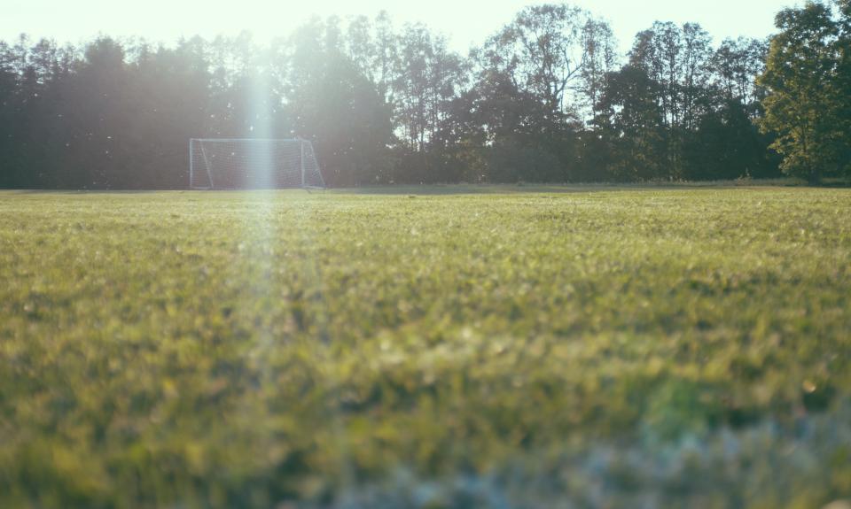 green, football, field, sunrise, sunshine, morning, sunlight, trees, plant