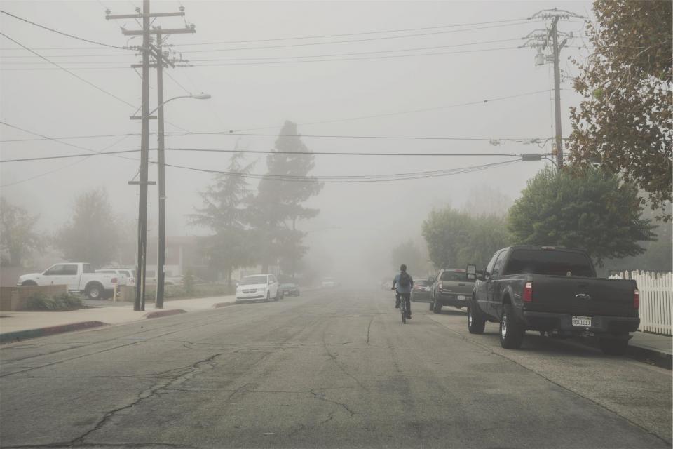 street, pavement, fog, bicycle, bike, cyclist, trucks, vans, sidewalk, power lines