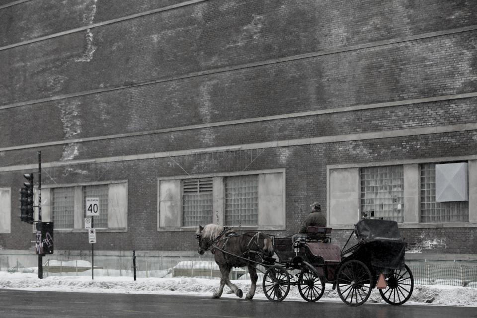 nature, landscape, chariot, people, man, horse, snow, winter, cold, weather, windows, building, establishment