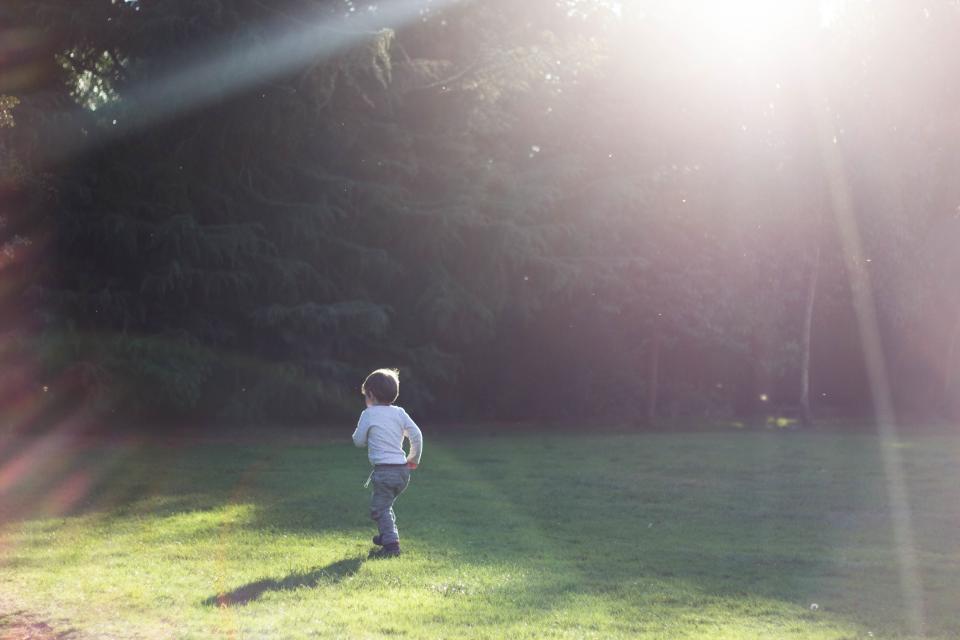 baby, boy, kid, child, garden, field, plant, nature, playground, green, grass, sunlight, sunshine, sunrise