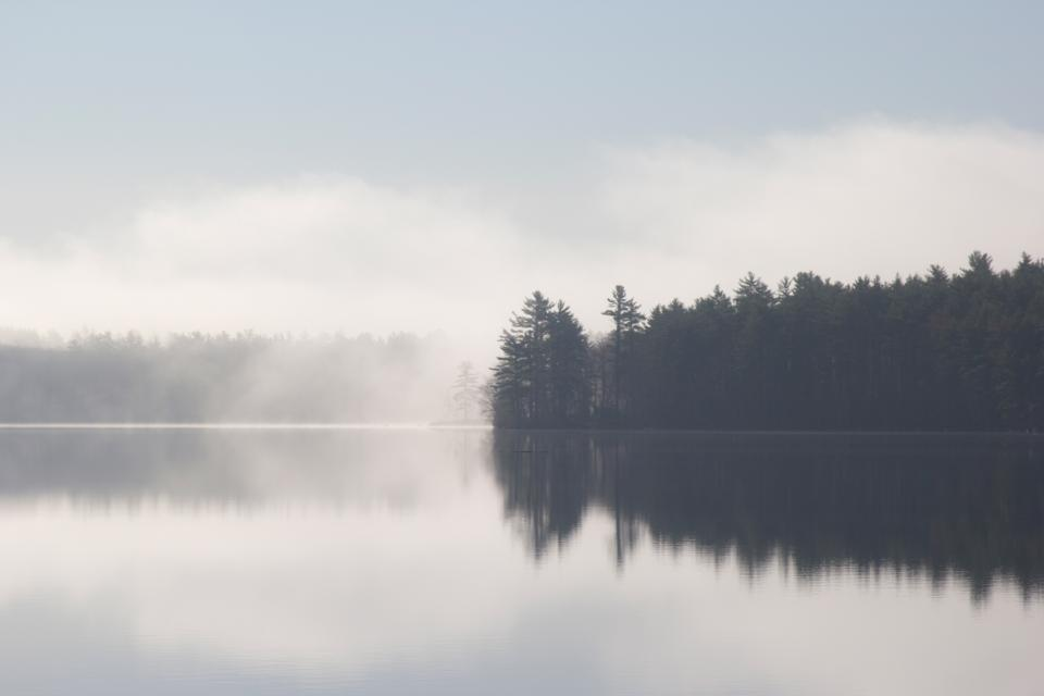 lake water reflection mist trees nature landscape