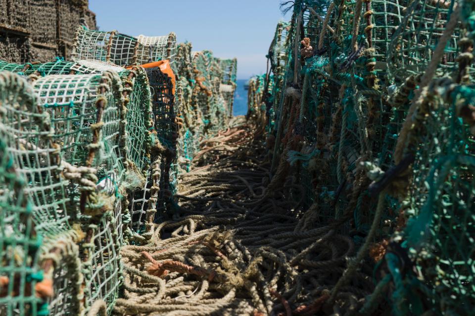 fishing, net, rope, sea, sunny, day