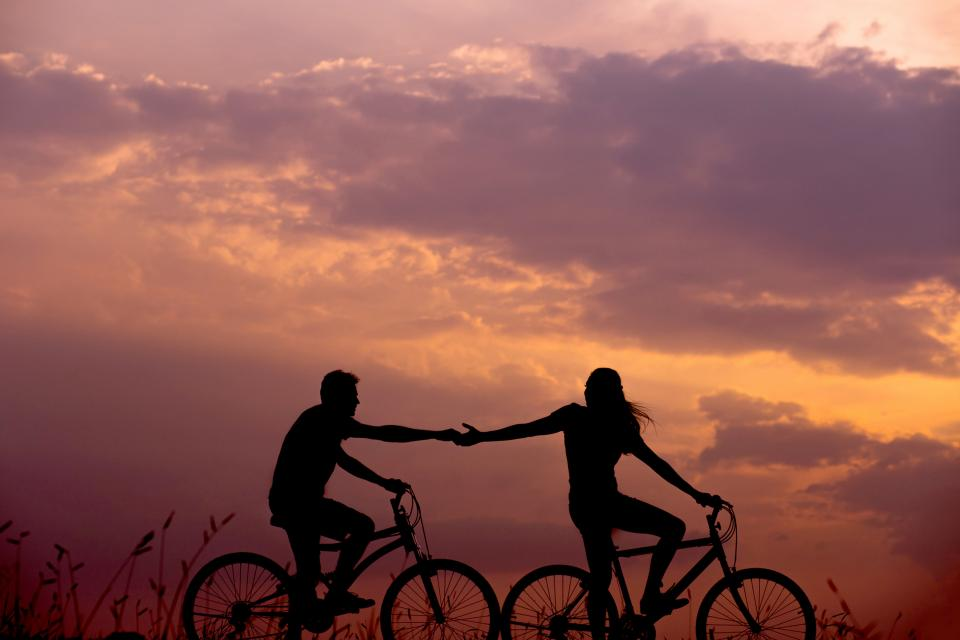 silhouette, bike, bicycle, couple, holding hands, leaves, grass, nature, clouds, sunset, sky, people, guy, girl, love