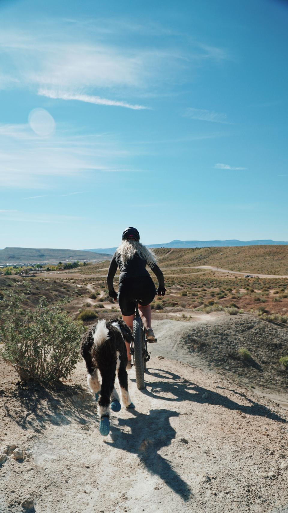 mountain, blue, sky, bike, adventure, outdoor, travel, sunny, day, sport, fitness, exercise, dog, animal, running, highland