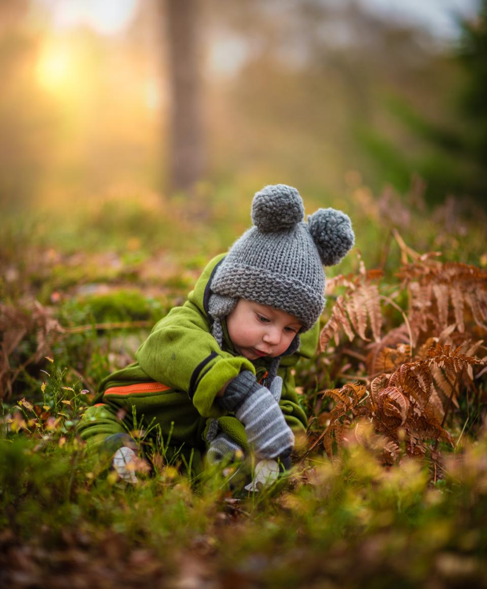 grass, green, leaf, fall, people, kid, child, baby, toddler, outdoor, playground