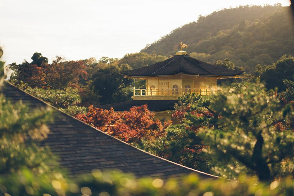 trees, plants, forest, mountain, nature, house, temple, rooftop, autumn, fall