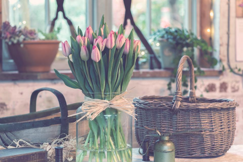 flower, pink, petal, bloom, garden, plant, nature, autumn, fall, basket, shop, tulips, green, leaves