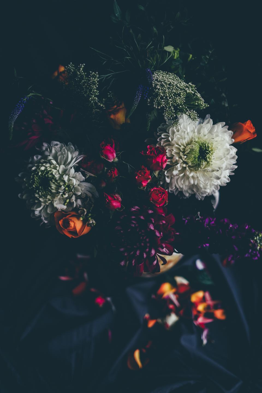 flower, nature, blossom, blur, bokeh, black, petals, dark, beautiful, aesthetic, rose, bouquet