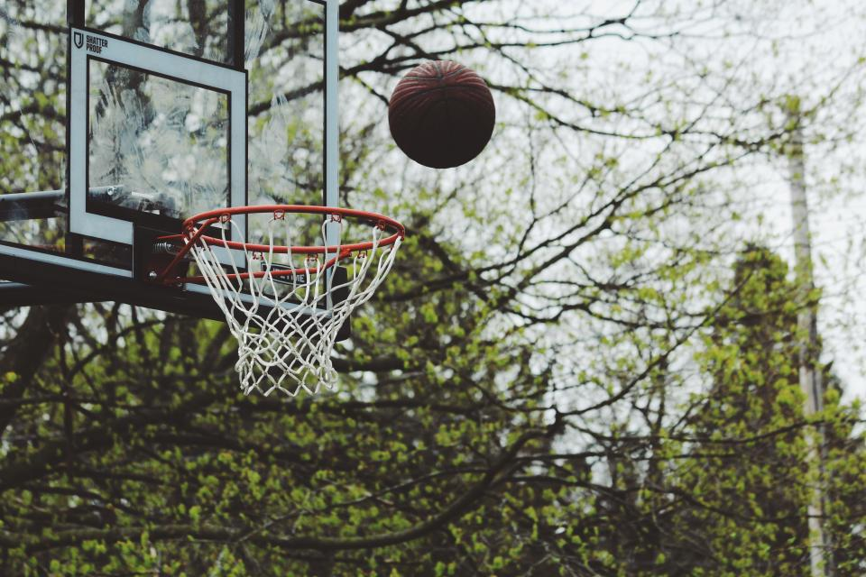 green, trees, plant, nature, outdoor, basketball, ring, ball, play, game, sport